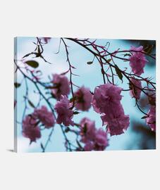 Lienzo Horizontal Flowers