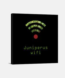 Lienzo JUNIPERUS WIFI Y.ES_025A_2019_Juniperus Wifi