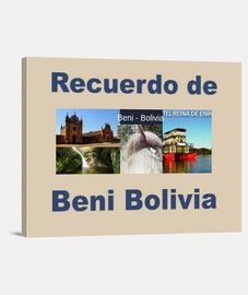 Lienzo recuerdo de Beni Bolivia