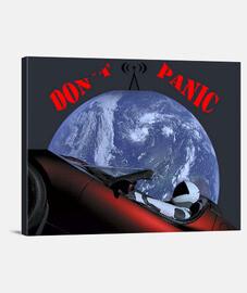 Lienzo Tesla-Don't Panic