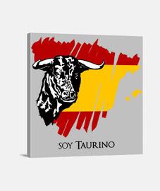 Lienzo toro y bandera de España