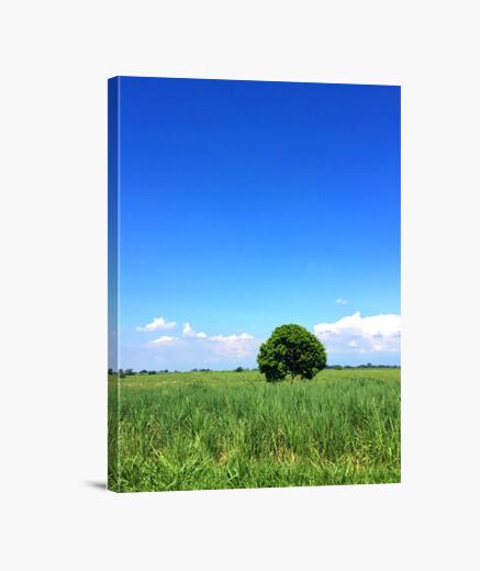 Lienzo Lonly Tree