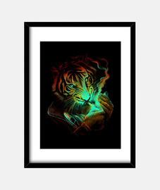 lumière tigre