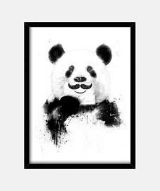 lustigen panda