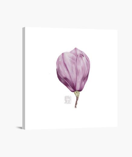 Stampa su tela magnolia