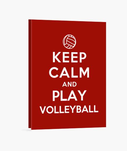 Lienzo manten la calma y juega voleibol
