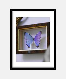 mariposa vertical de la decoración ocultura