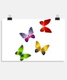 Mariposas multicolor