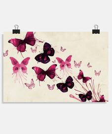 Mariposas varias