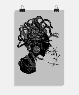medusa negra