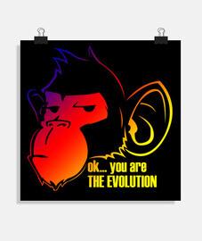 MONKEY EVOLUTION COLORS