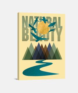 natürliche schönheit - texturen