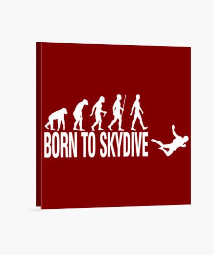 Tableau né à skydive
