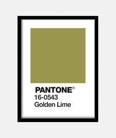 PANTONE 16-0543 TPX