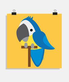 pappagallo bolla