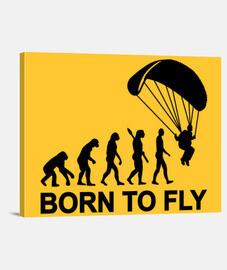 paracadutismo evoluzione born a fly