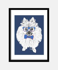 Perro pomerania gafas pajarita azul