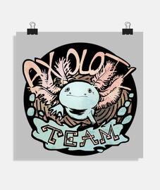 poster axolotl team 2