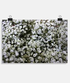 Póster horizontal 3:2 - (30 x 20 cm)