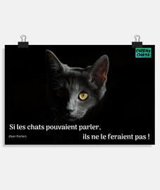 POSTER, si les chats pouvaient parler