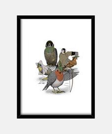 Robin and ses joyeux amis