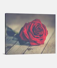 Rosa sobre madera