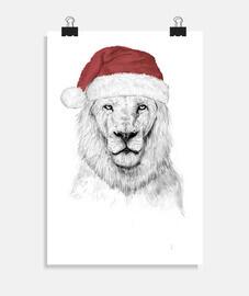 santa leonee