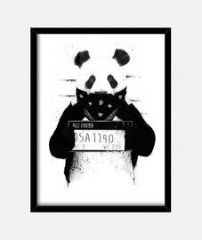 schlechter panda