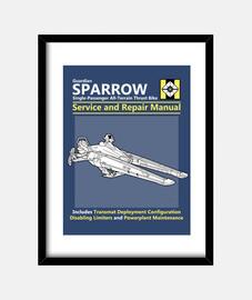 servizio di passero e manuale di riparazione