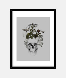 skull with flowers and animals