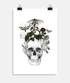 teschio con fiori e pianta