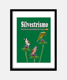 three feathers goldfinch pardeillo verd