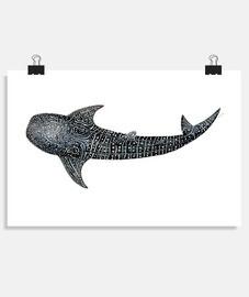 Tiburón ballena para buceadores
