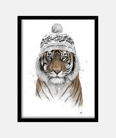 tigre sibérien