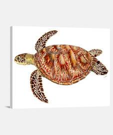 toile tortue verte horizontale 4: 3 - (40 x 30 cm)