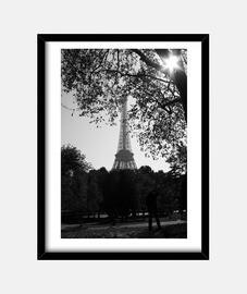 Torre Eiffel B&N - Cuadro