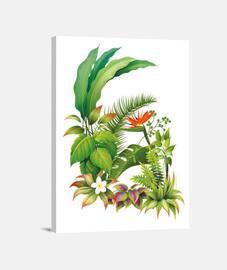 Tropical / fleurs / plantes