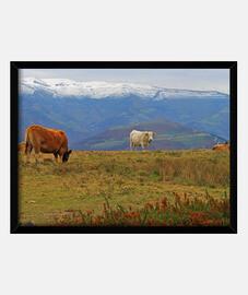 Valles pasiegos - Cantabria