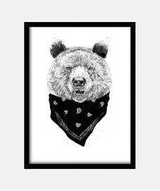wilde bear