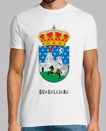 079 - Guadalajara