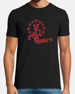 12 scimmie