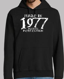 1977 kiralynn bianchi