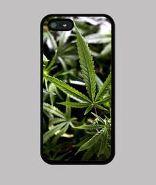 208187 Funda Marihuana.