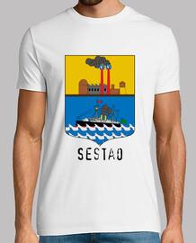 263 - Sestao