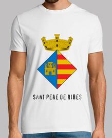 266 - Sant Pere de Ribes