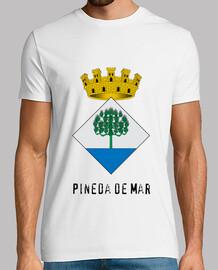 295 - Pineda de Mar