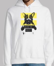 2 jaune chien rebelle