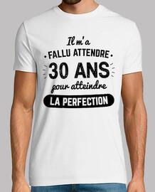 30 Ans Pour Atteindre La Perfection v2