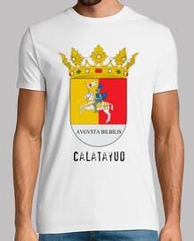 384 - Calatayud