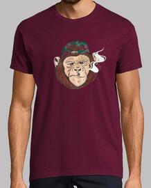 affaires de singe.